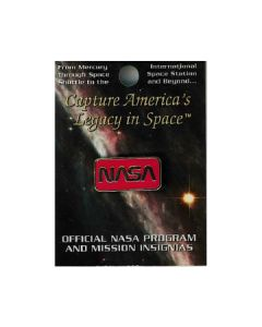 NASA Worm Pin