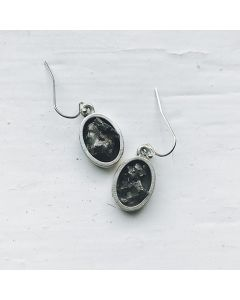 Raw Meteorite Oval Dangle Earrings