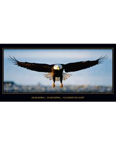 Cleared To Land Eagle Poster