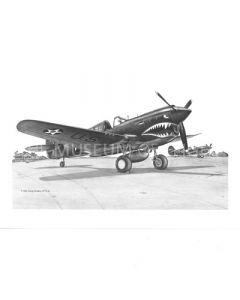 Small P-40 Illustration