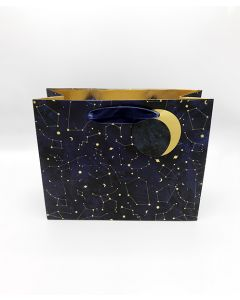 Stars and Moon Landscape Gift Bag