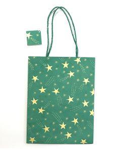 Green Medium Shooting Star Gift Bag